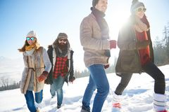 Winter holiday. Friends spending winter holiday in the mountain Stock Image