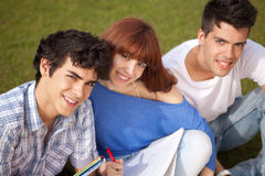 Friends studying. Group of friends studying at the park Royalty Free Stock Images