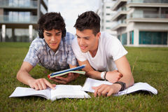Friends studying. Two friends studying at the park Stock Photo