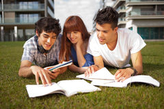 Friends studying. Group of friends studying at the park Stock Image