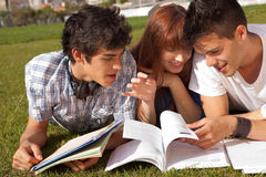 Friends studying. Group of friends studying at the park Stock Images
