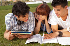 Friends studying. Group of friends studying at the park Stock Photography