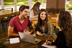 Friends studying together Royalty Free Stock Photography
