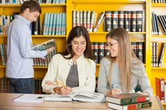 Friends Studying Together At Table In University Royalty Free Stock Images