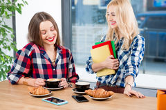 Friends stuyding at the cafe Royalty Free Stock Images