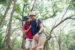 Support friend to walk while hiking. Friends support his friend to walk while hiking in the forest. group of male hiker together Royalty Free Stock Photos