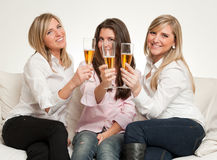 Friends toast Royalty Free Stock Photography