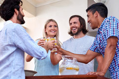 Friends toast Royalty Free Stock Image