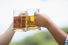 Friends toasting beer glasses Royalty Free Stock Photo