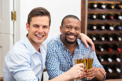 Friends toasting beer glasses Stock Images