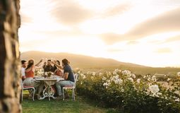 Friends toasting champagne at dinner party. Group of friends toasting champagne glasses at dinner party outdoors. Young people having drinks during dinner at stock photos