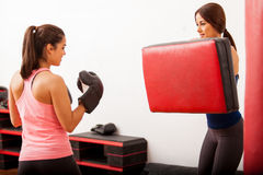 Friends training box at a gym Royalty Free Stock Images
