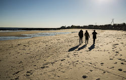 Friends walking on the beach Stock Photography