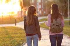 Friends walking together at sunset Royalty Free Stock Images