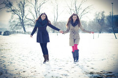 Friends walking on winter day Stock Photos