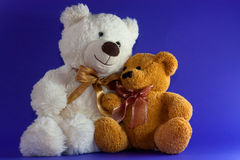 Friendship 2 teddy bears Royalty Free Stock Photography