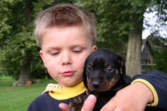 Friendship. A boy and a dog stock photos