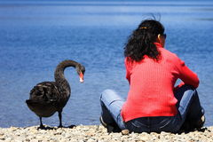 Friendship. Between human being and wild life, new zealand Stock Photo