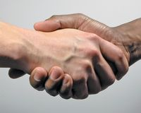 Friendship. Close up of hand shake Stock Image