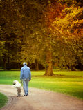 Friendship. Man walking with his dog in the park stock image