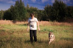 The friendship of a boy and a wild beast. The loyalty of a wolf royalty free stock photos