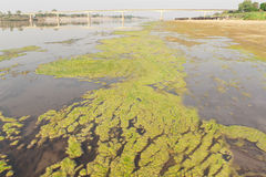 Friendship Bridge Thai - Laos 1st and Algae . Stock Images