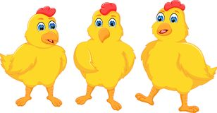 Friendship of chicken cartoon standing with smile happiness Stock Image