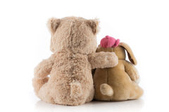 Friendship between the dog and the bear. Dog and teddy bear with their arms around each other Stock Images