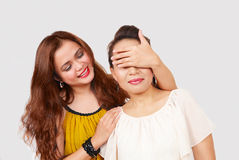 Friendship fun Royalty Free Stock Image