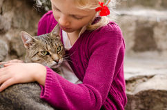 Friendship of girl and cat Stock Image