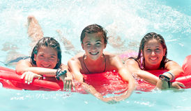 Friendship. Group of friends spending time together at the pool Royalty Free Stock Image