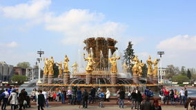 The Friendship of Nations fountain, VDNKh, Moscow, Russia stock video