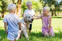 Nice kids playing with a big dog in the park royalty free stock image