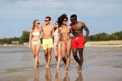 Mixed race couple walking along beach with friends stock image