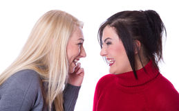 Friendship - two girlfriends have fun together - smiling and spe Stock Photography