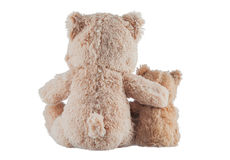 Friendship - two teddy bears. Friendship - two teddy Bears on a white background Stock Photos