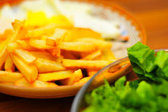 Fries dish Royalty Free Stock Image