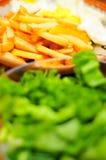 Fries dish Stock Image