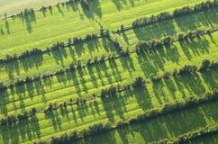 Friesland. Luchtfoto van boerenland in Friesland; Aerial photo of rural aereas in Friesland royalty free stock photos