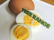 Frigör område, organiska hårda kokta ägg Arkivfoton