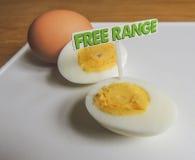 Frigör område, organiska hårda kokta ägg Arkivfoto