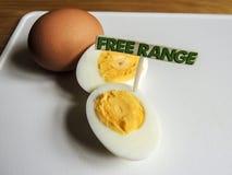 Frigör område, organiska hårda kokta ägg Royaltyfri Foto