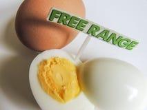 Frigör organiska hårda kokta ägg för område Royaltyfri Fotografi