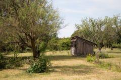 Friggebod och träd i fruktträdgård Arkivbilder