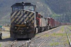 Fright train royalty free stock photo