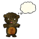 Frightened black bear cartoon with thought bubble Stock Images