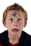 Frightened boy with spider Royalty Free Stock Photos