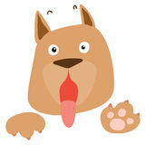 Frightened brown dog on white background  Royalty Free Stock Images