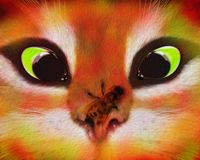 A frightened cat and an impudent bee. royalty free illustration