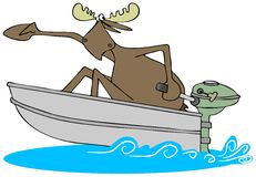 Frightened moose in a motor boat. Stock Photo